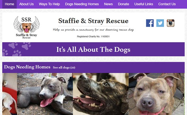 Staffie and Stray Rescue