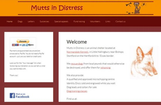 Mutts in Distress