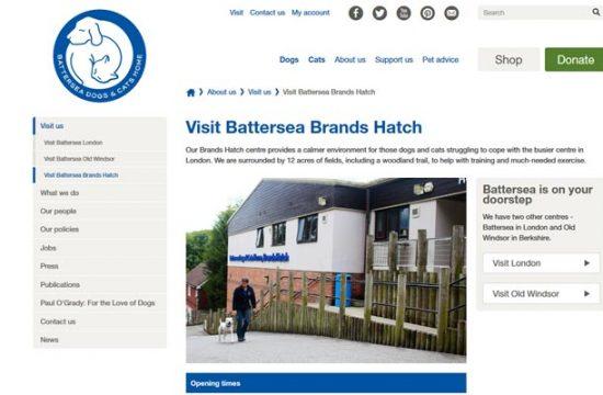 Battersea at Brands Hatch