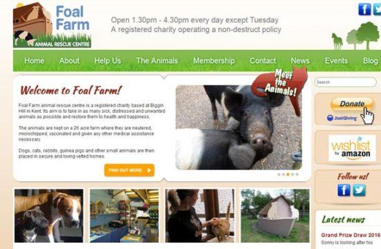 Foal Farm Rescue Centre