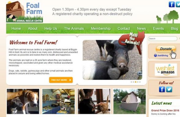 Foal Farm Rescue Centre