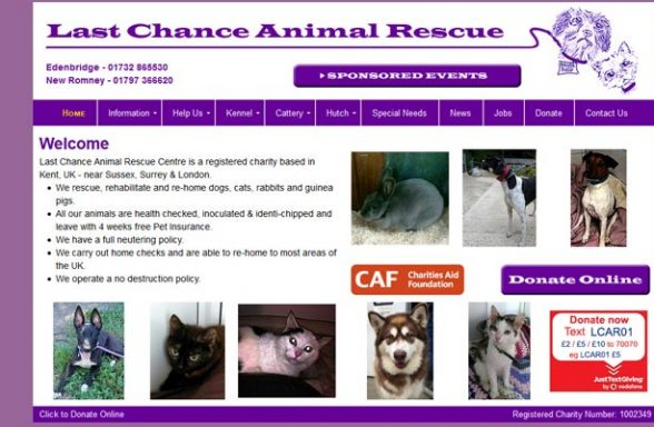 Milton Cat And Dog Rehoming Centre
