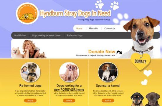 Hyndburn Straydogs in Need