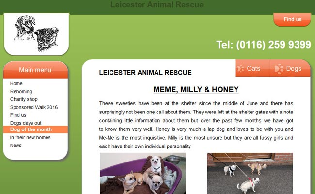 Leicester Animal Rescue