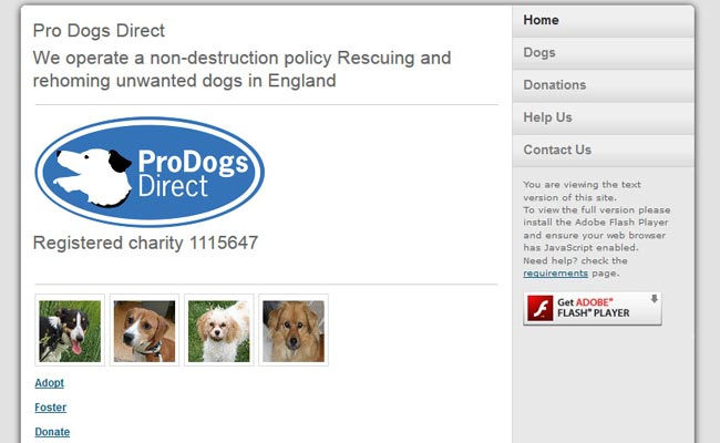 Pro Dogs - Direct Re-Homing