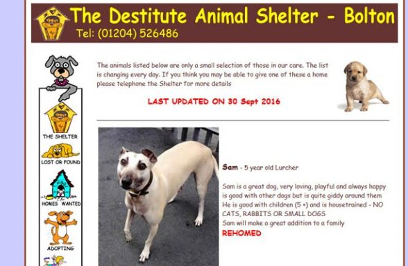 Destitute Animal Shelter