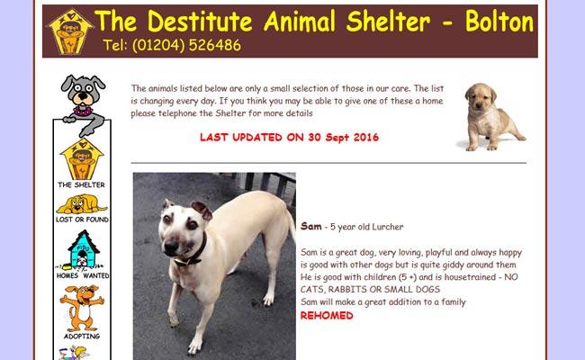 Destitute Animal Shelter