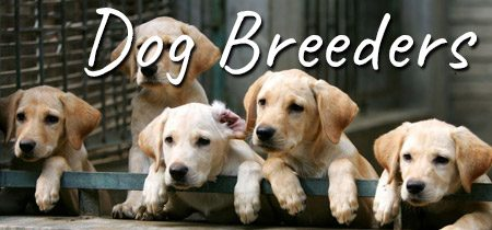 Breeder registrations