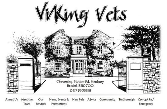 Viking Veterinary Surgeons