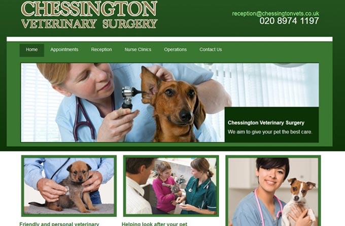 Chessington Veterinary Surgery